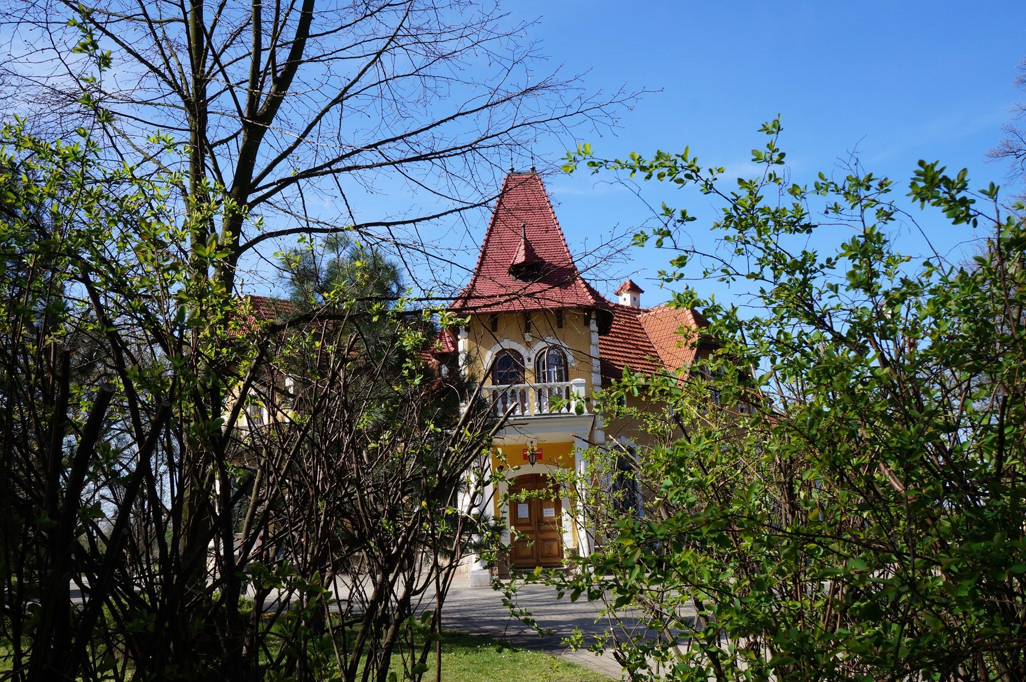Możesz tworzyć wystawę z okazji 550-lecia miasta Mielca! Muzeum kieruje apel  - Zdjęcie główne