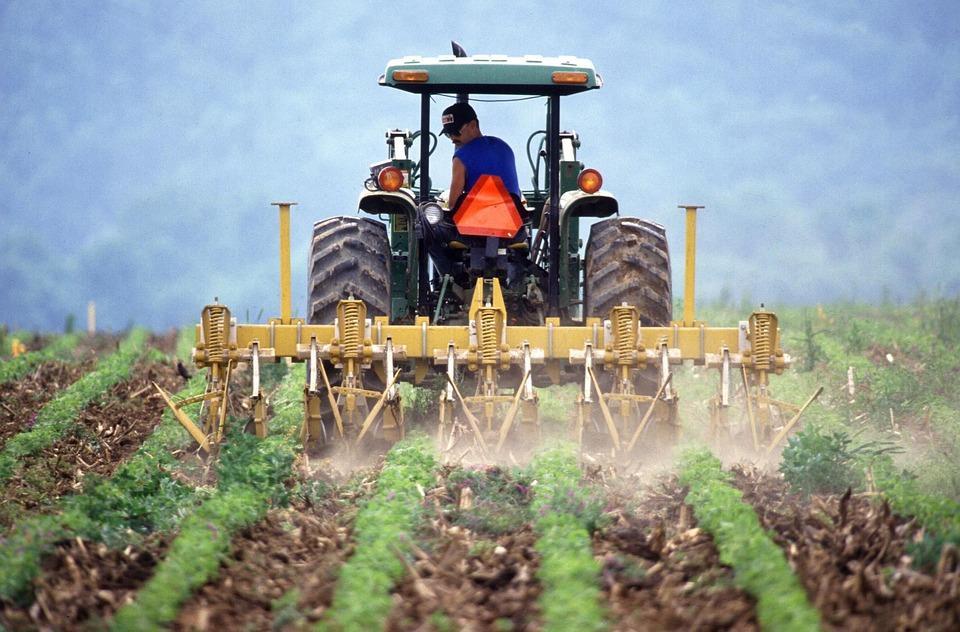 Pomimo zakazu jeździł traktorem - Zdjęcie główne