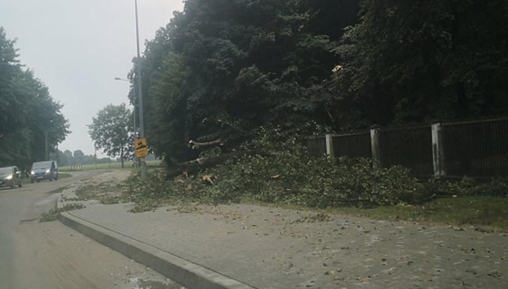 Zalane drogi, zerwane drzewa - straż miała dużo pracy w weekend - Zdjęcie główne