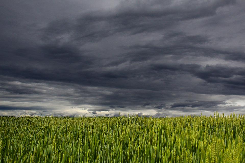 Burza wisi w powietrzu. Ostrzeżenie IMGW - Zdjęcie główne