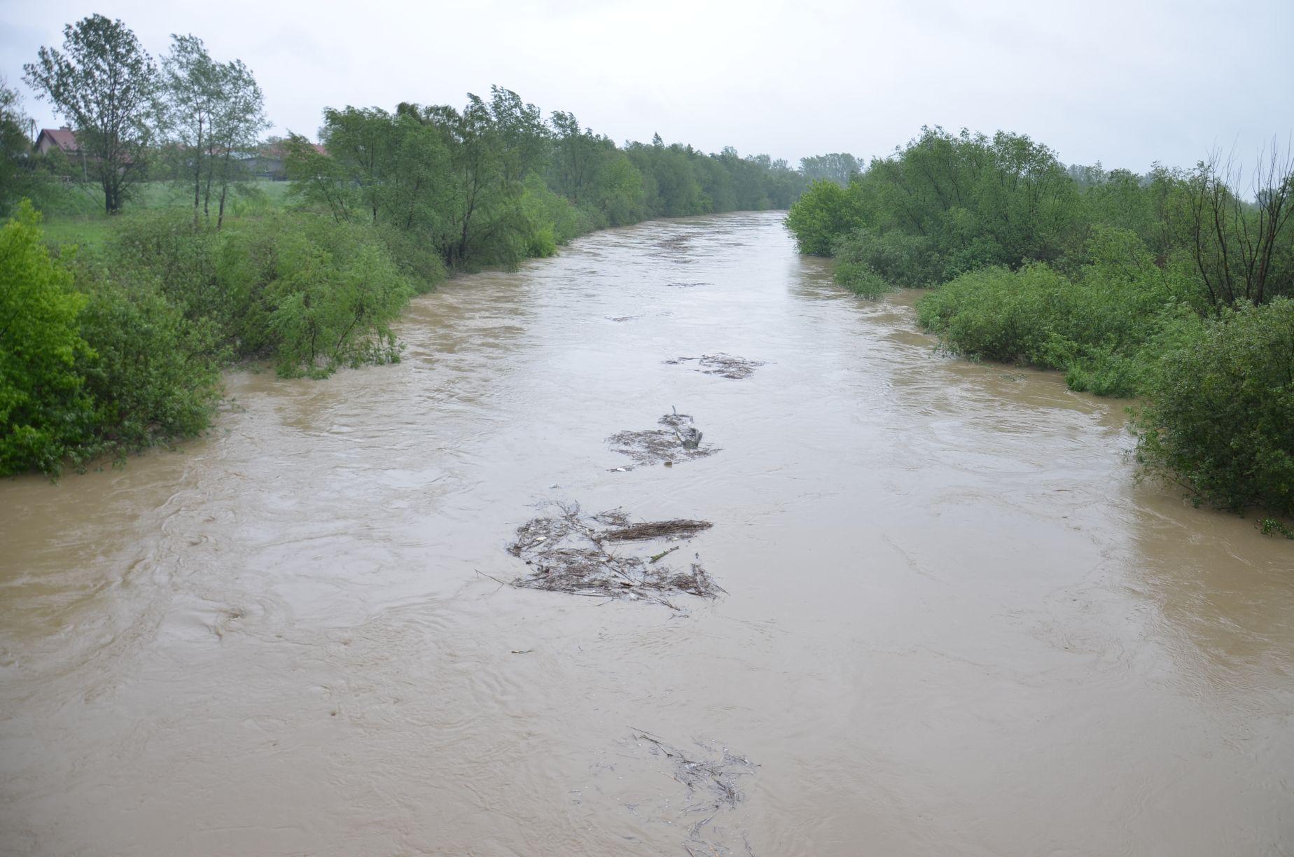Wisłoka się podnosi. Alarm powodziowy w Mielcu! - Zdjęcie główne