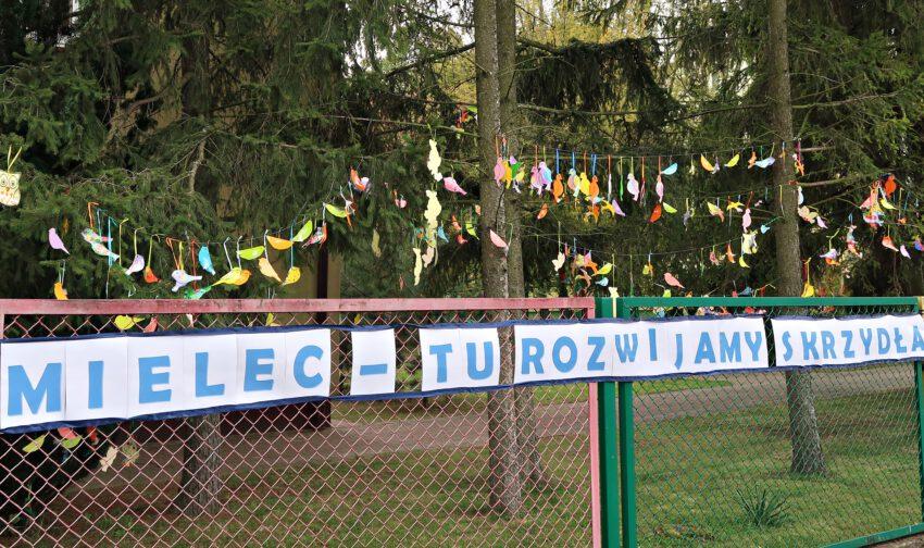 Przedszkolaki stworzyły wystawę. Na drzewach zaroiło się od ptaszków  - Zdjęcie główne