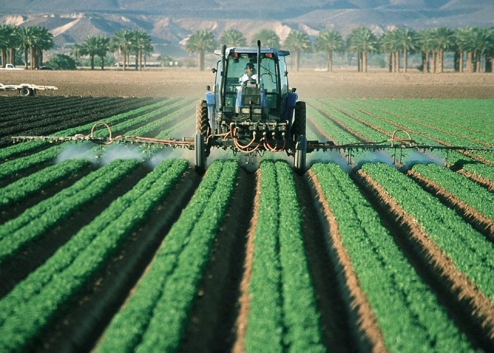 Mieleccy i Dębiccy rolnicy będą protestować! Poznaliśmy ich argumenty [AUDIO] - Zdjęcie główne