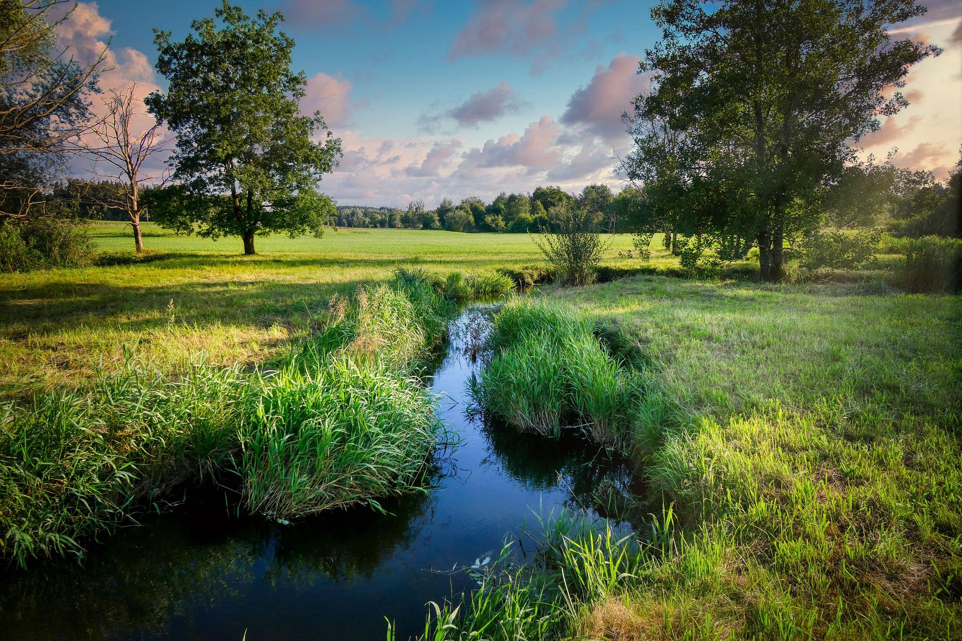 Sprostowanie do informacji Najważniejsze cieki wodne w Gminie Radomyśl Wielki zostaną poddane konserwacji - Zdjęcie główne