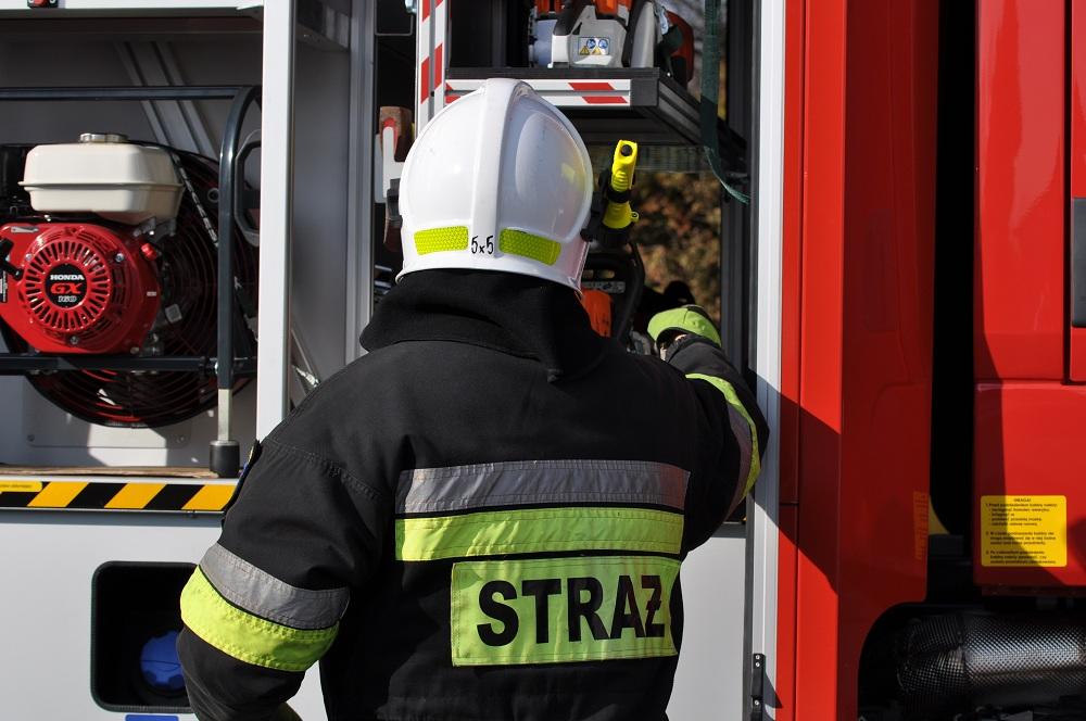 Strażacy usuwali powalone drzewo - Zdjęcie główne