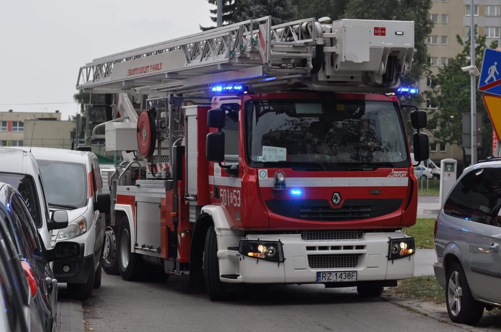 Fałszywy alarm pożarowy w Leroy Merlin - Zdjęcie główne