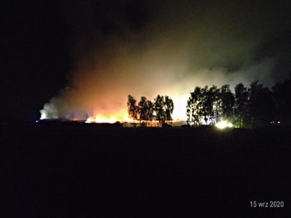 Płonie ferma drobiu w Żarówce. W ogniu znalazło się 7000 indyków [AKTUALIZACJA] [FOTO] - Zdjęcie główne