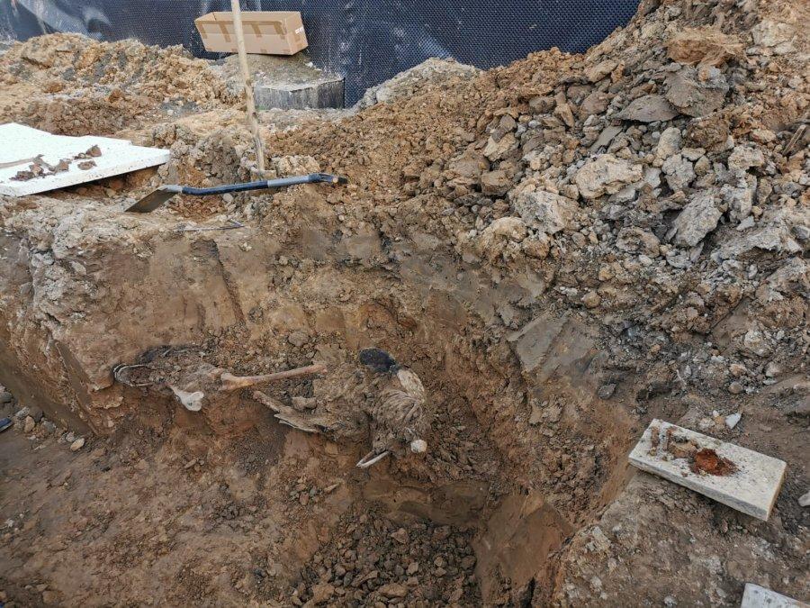 Region: Fragmenty ludzkiego szkieletu odkryte podczas prac budowlanych - Zdjęcie główne