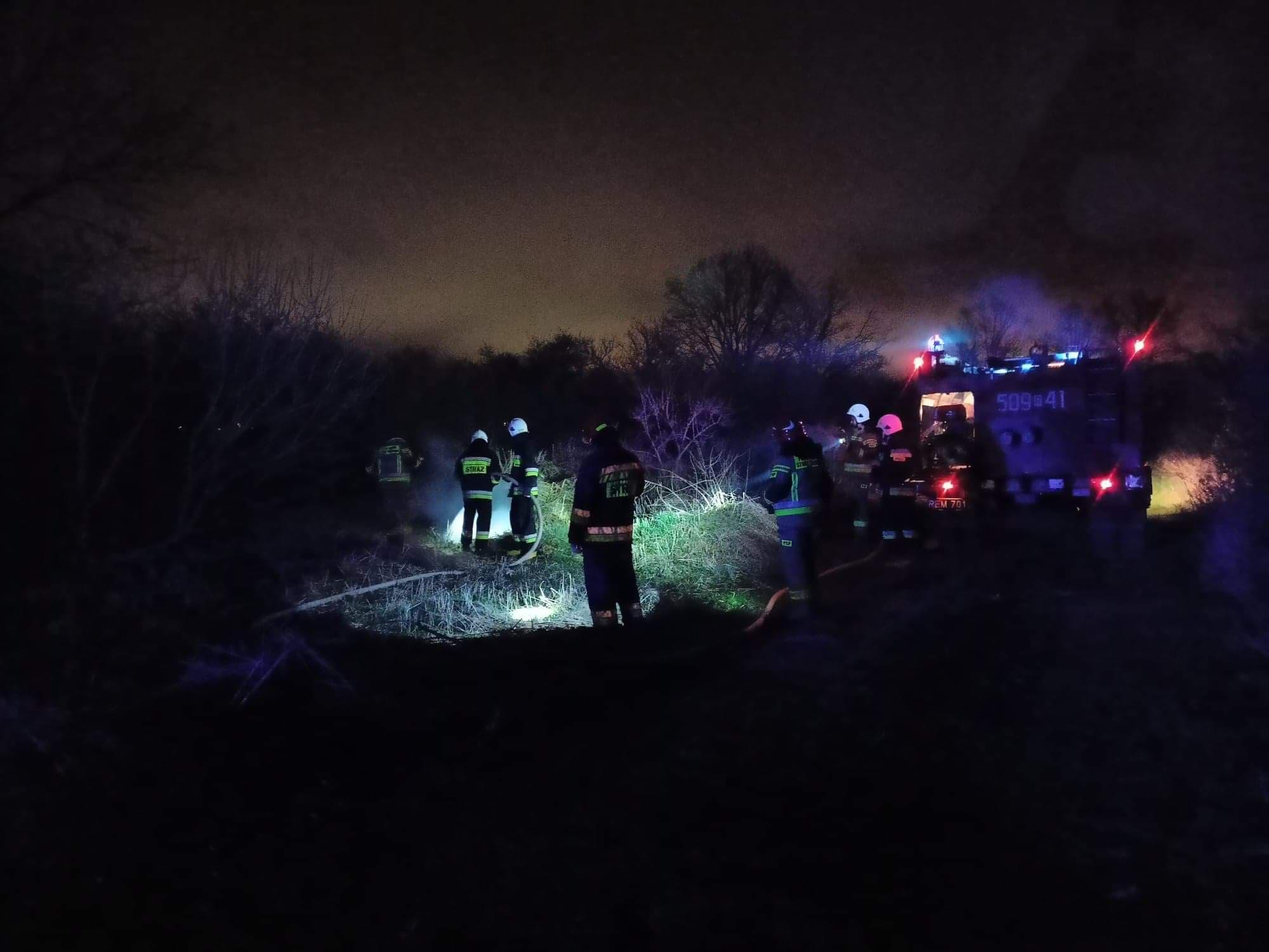 Pożar przy drodze [ZDJĘCIA] - Zdjęcie główne