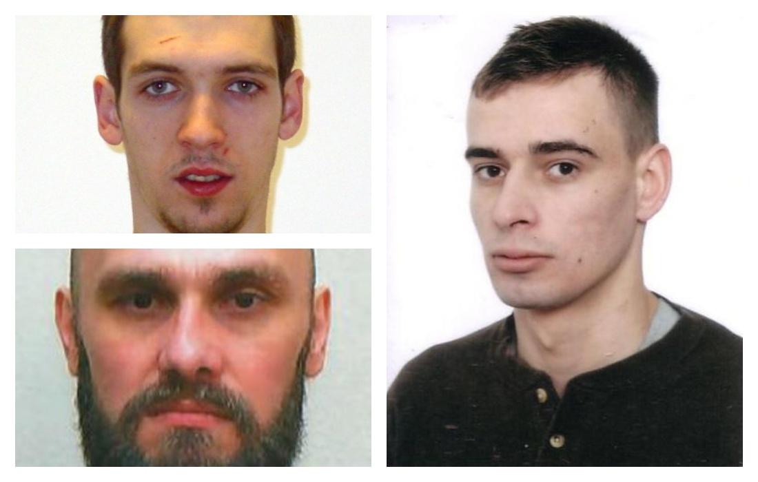 Kierowca pod wpływem alkoholu to potencjalny zabójca! Tych mieszkańców Podkarpacia szuka policja! - Zdjęcie główne