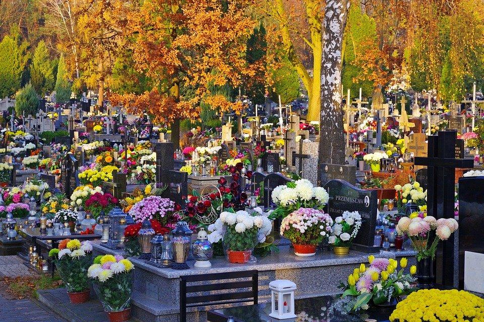 W Mielcu od dziś ruszają darmowe linie na cmentarz - Zdjęcie główne