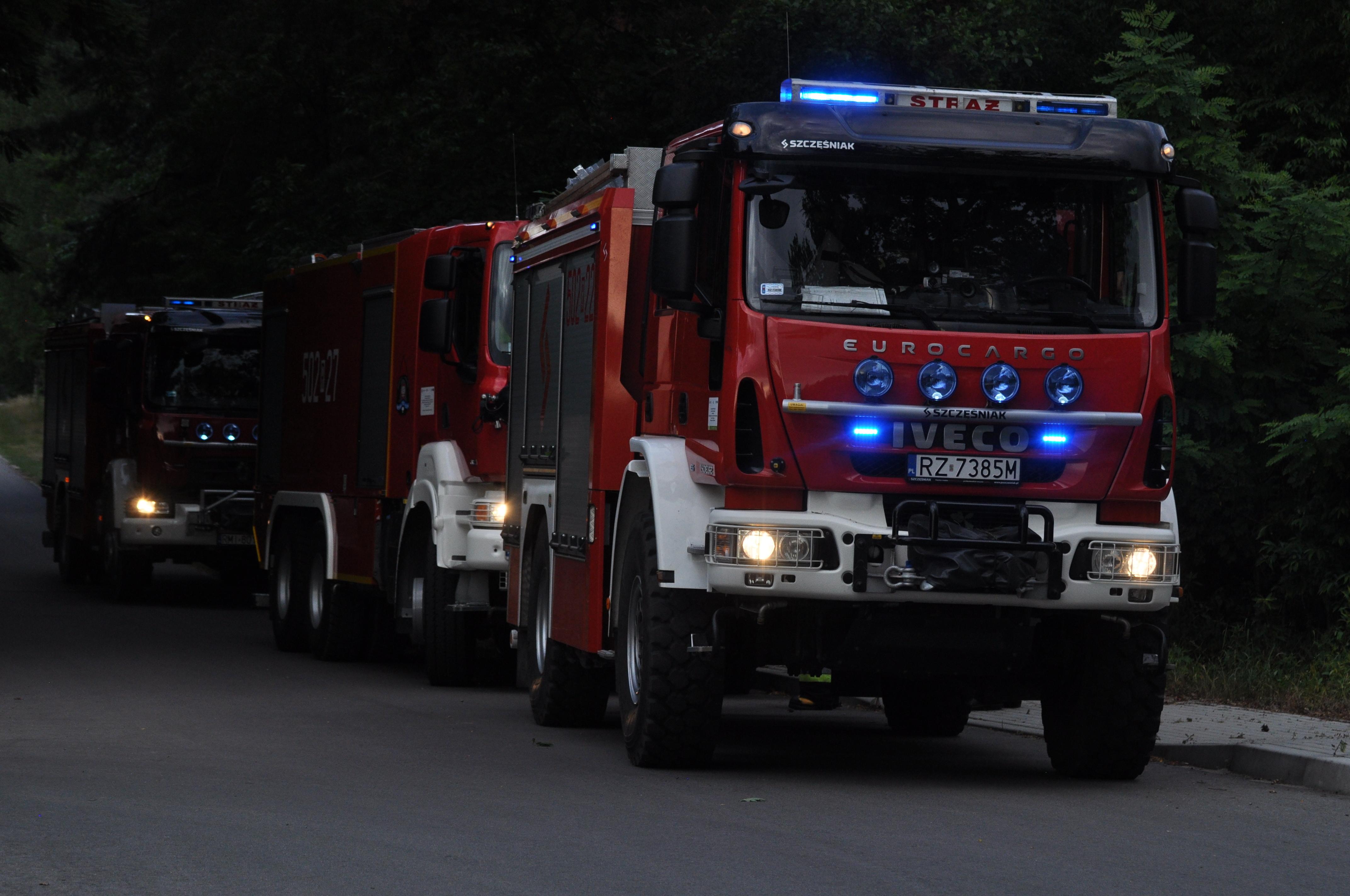 Pożar lasu. Na miejsce jadą jednostki straży pożarnej! - Zdjęcie główne