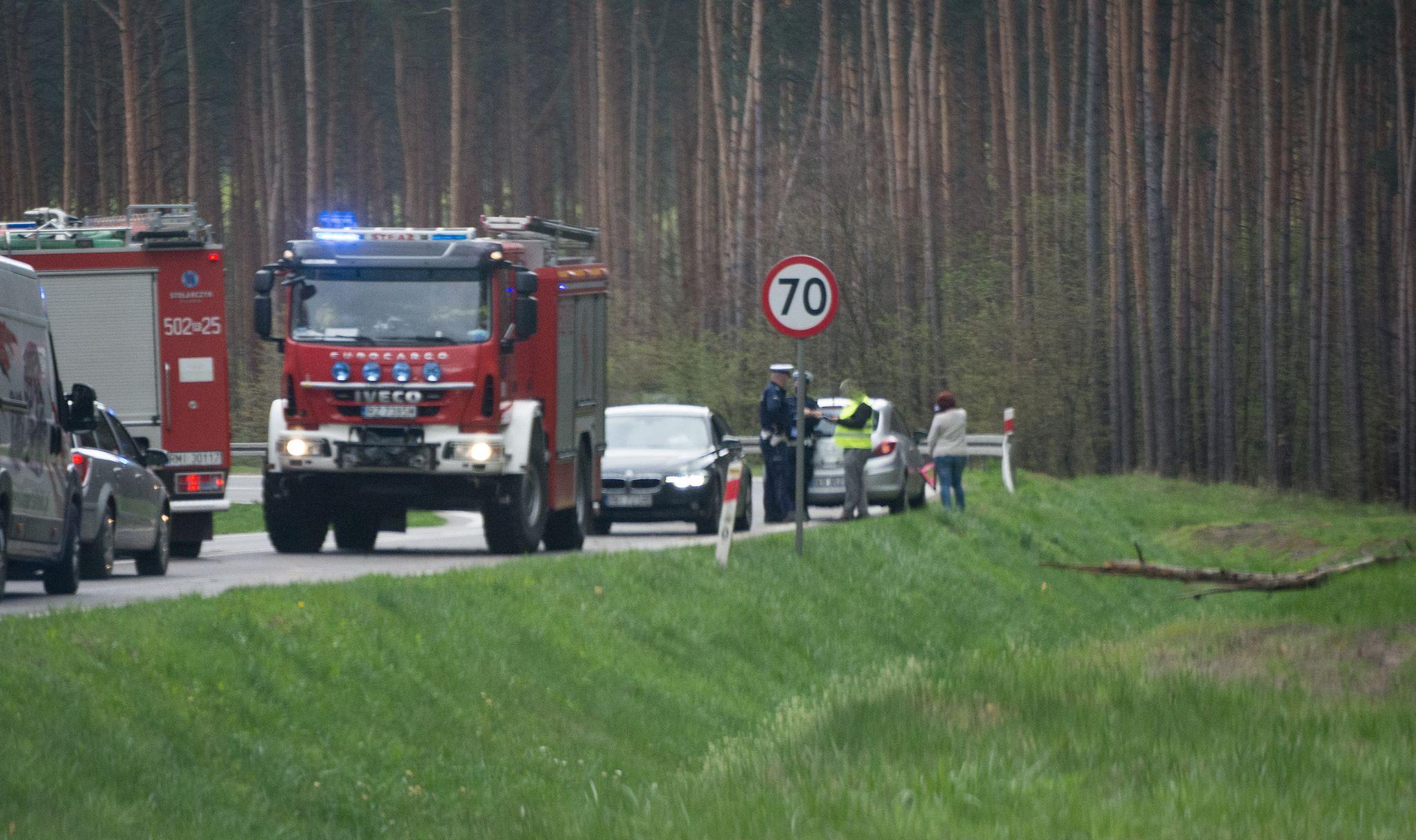 Drzewo spadło na przejeżdżający samochód [ZDJĘCIA] - Zdjęcie główne