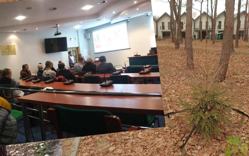 Mieszkańcy chcą dyskutować o parku leśnym! W tle awantura o 80 brakujących drzew [VIDEO]  - Zdjęcie główne