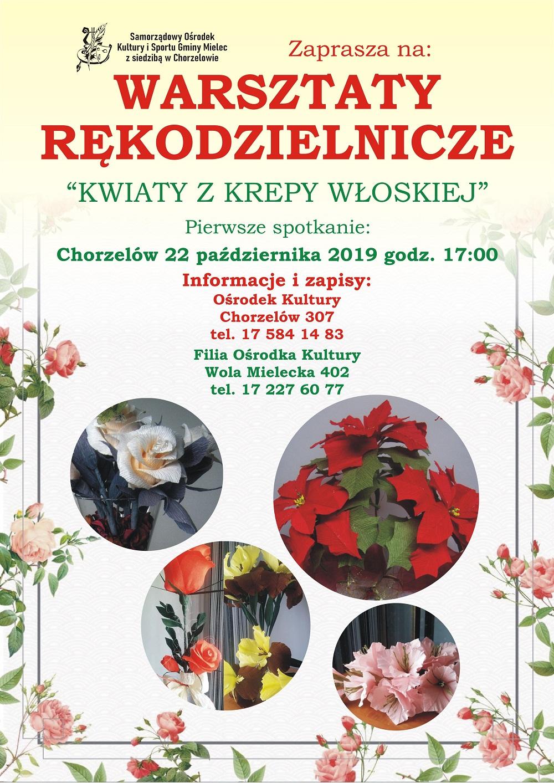 Kwiatki, bratki i stokrotki w Chorzelowie - Zdjęcie główne