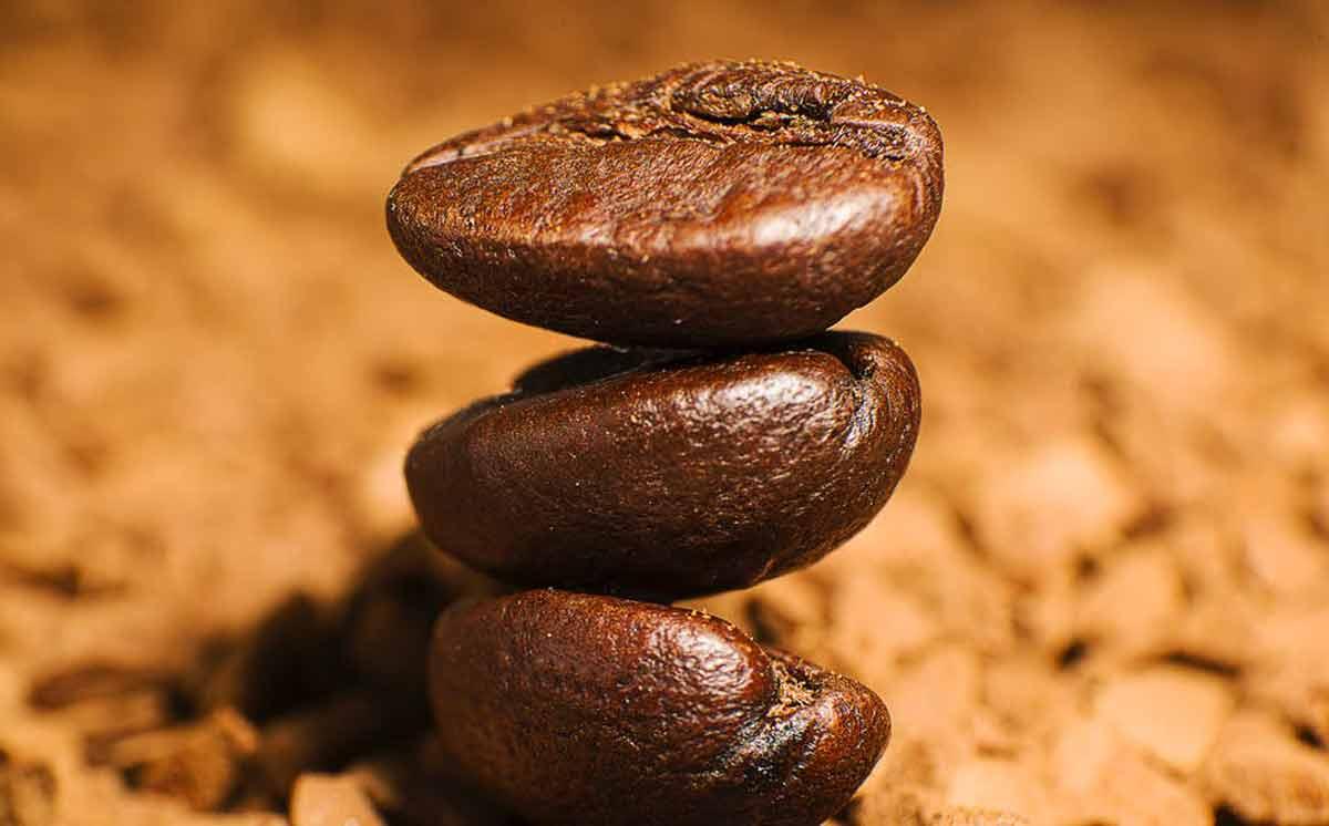 Kawa arabica, a robusta - czym się różnią? - Zdjęcie główne