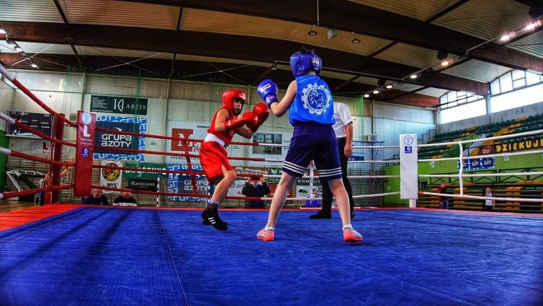 40 walk na turnieju bokserskim w Mielcu. Wśród nich medaliści Mistrzostw Polski - Zdjęcie główne