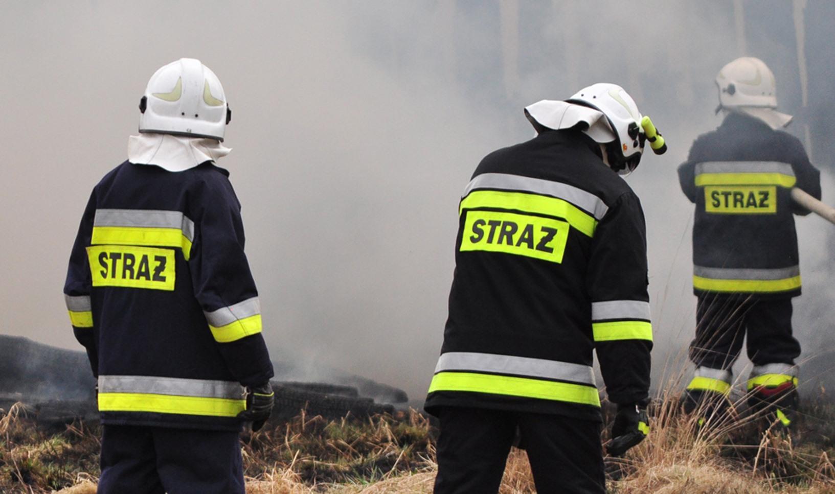 Z PODKARPACIA. Spłonął drewniany dom, w środku znaleziono zwłoki - Zdjęcie główne