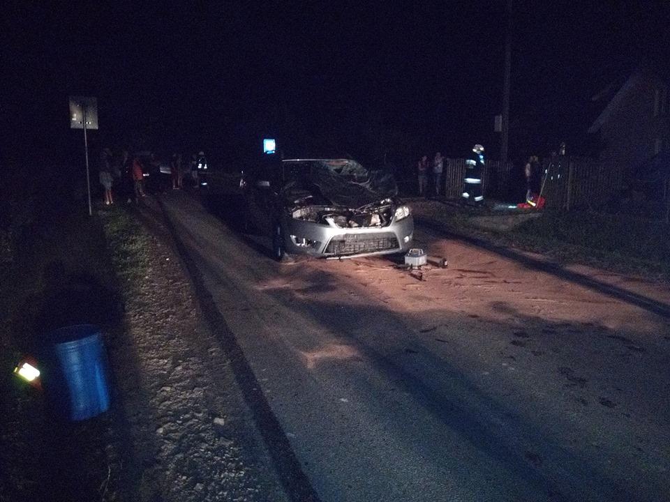 Koń nie przeżył zderzenia z samochodem - Zdjęcie główne