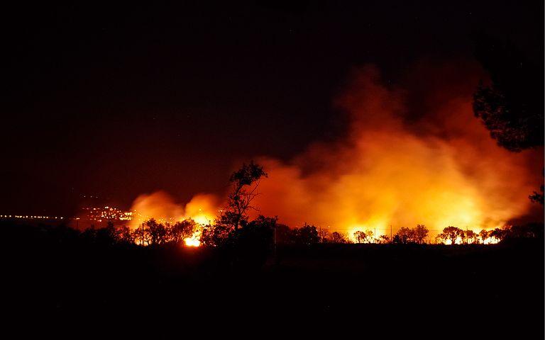 Niemal hektar lasu w ogniu. Mnóstwo strażaków i cysterna z wodą [AKTUALIZACJA-ZDJĘCIA] - Zdjęcie główne