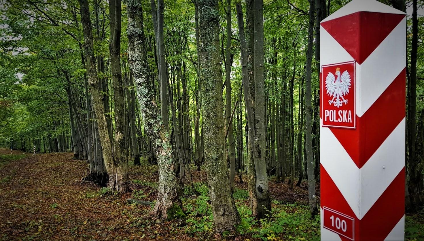 Przez las z plecakiem pełnym papierosów  - Zdjęcie główne