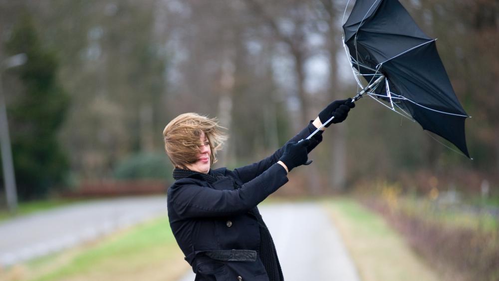 Zbliża się potężna WICHURA! Wiatr może wyrządzić wiele szkód! - Zdjęcie główne