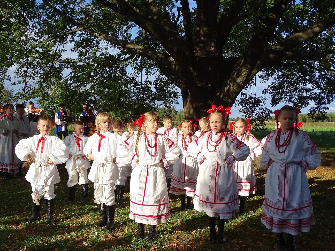 Młode pokolenie pod bardzo starym drzewem, czyli tańce pod Drzewem Roku - Zdjęcie główne