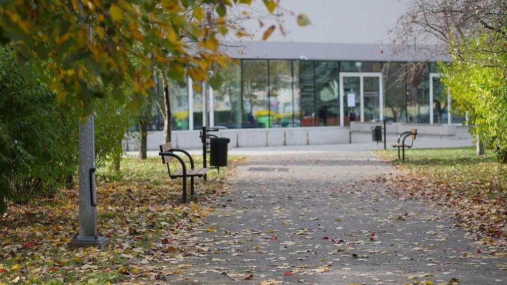 Jesienny krajobraz w Mielcu [VIDEO] - Zdjęcie główne