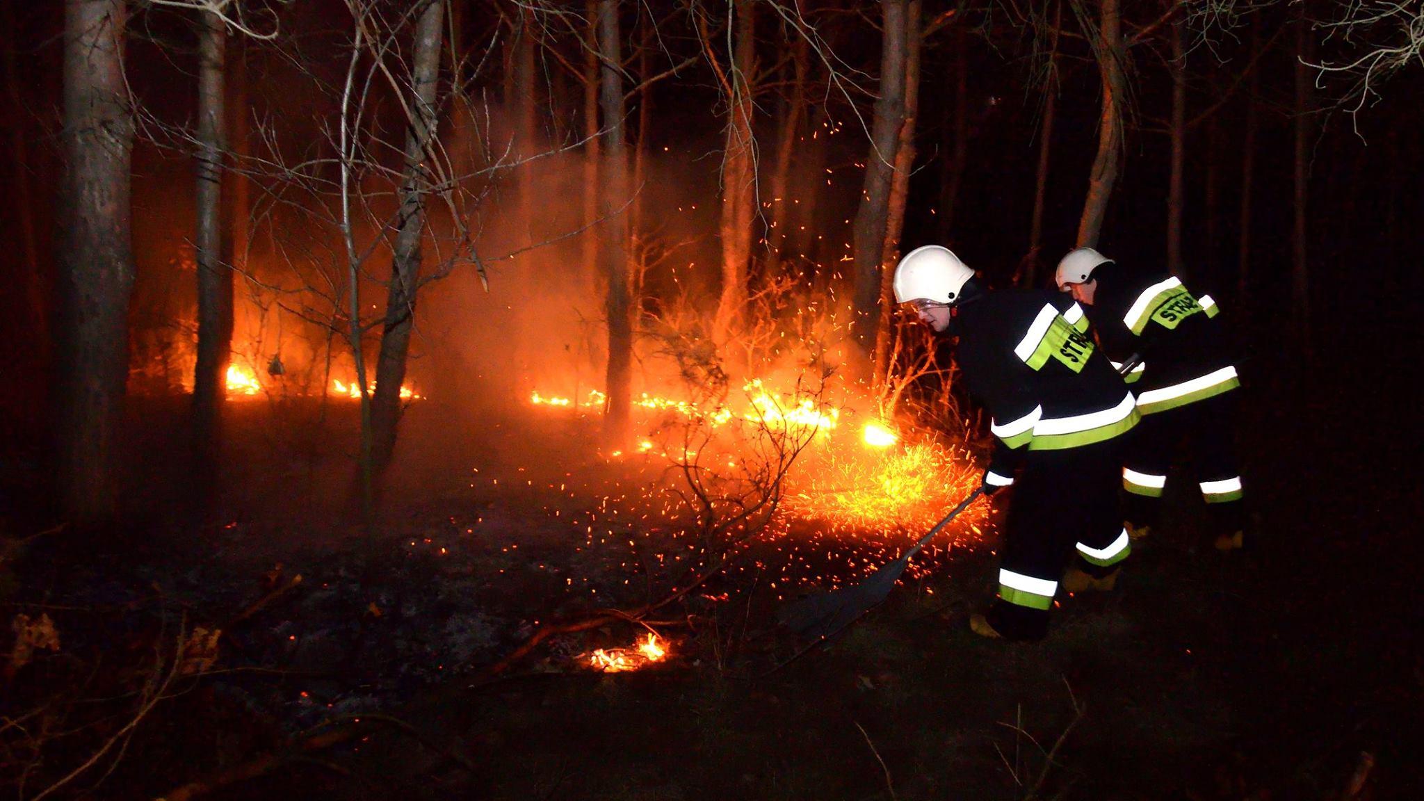 Strażacy apelują i przestrzegają przed wypalaniem traw - Zdjęcie główne