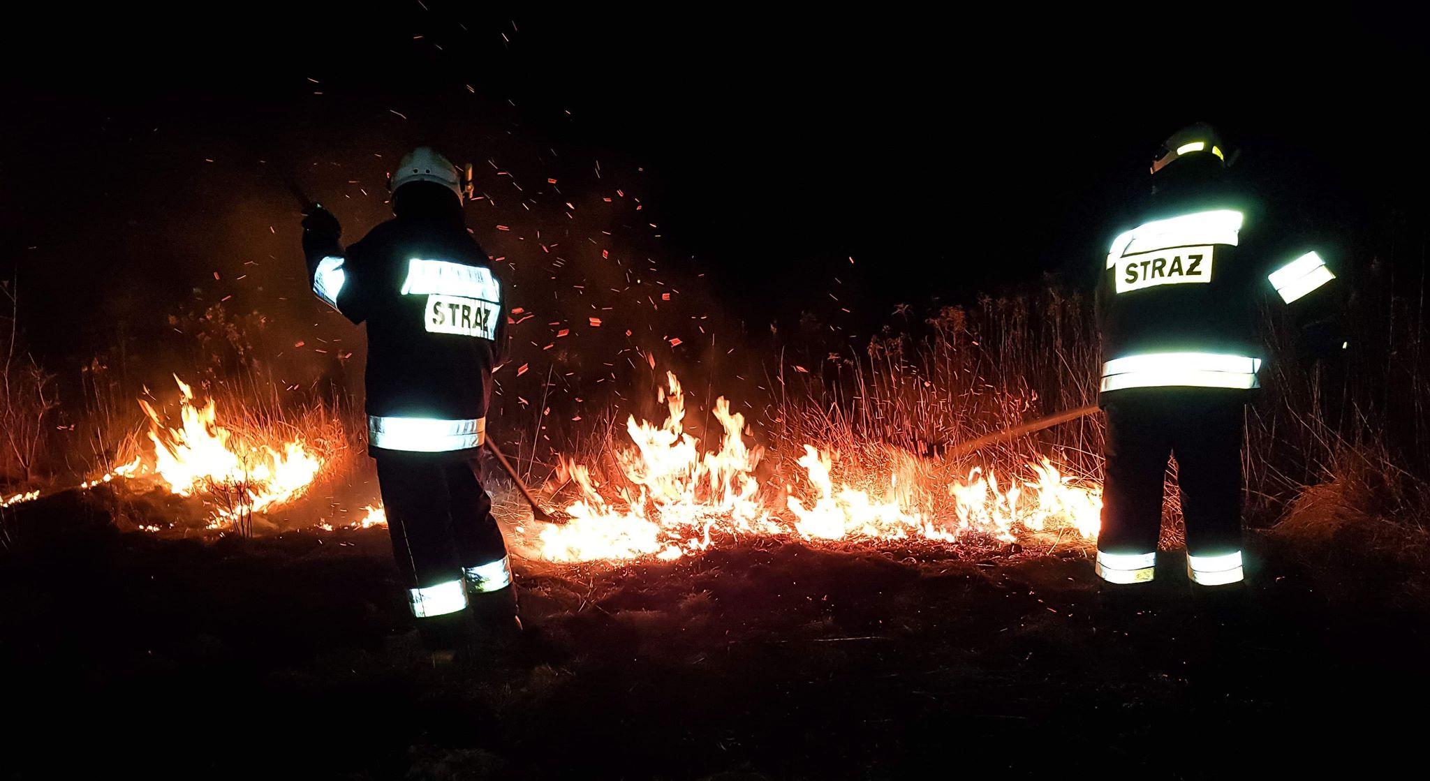 Strażacy gaszą pożar suchej trawy! - Zdjęcie główne