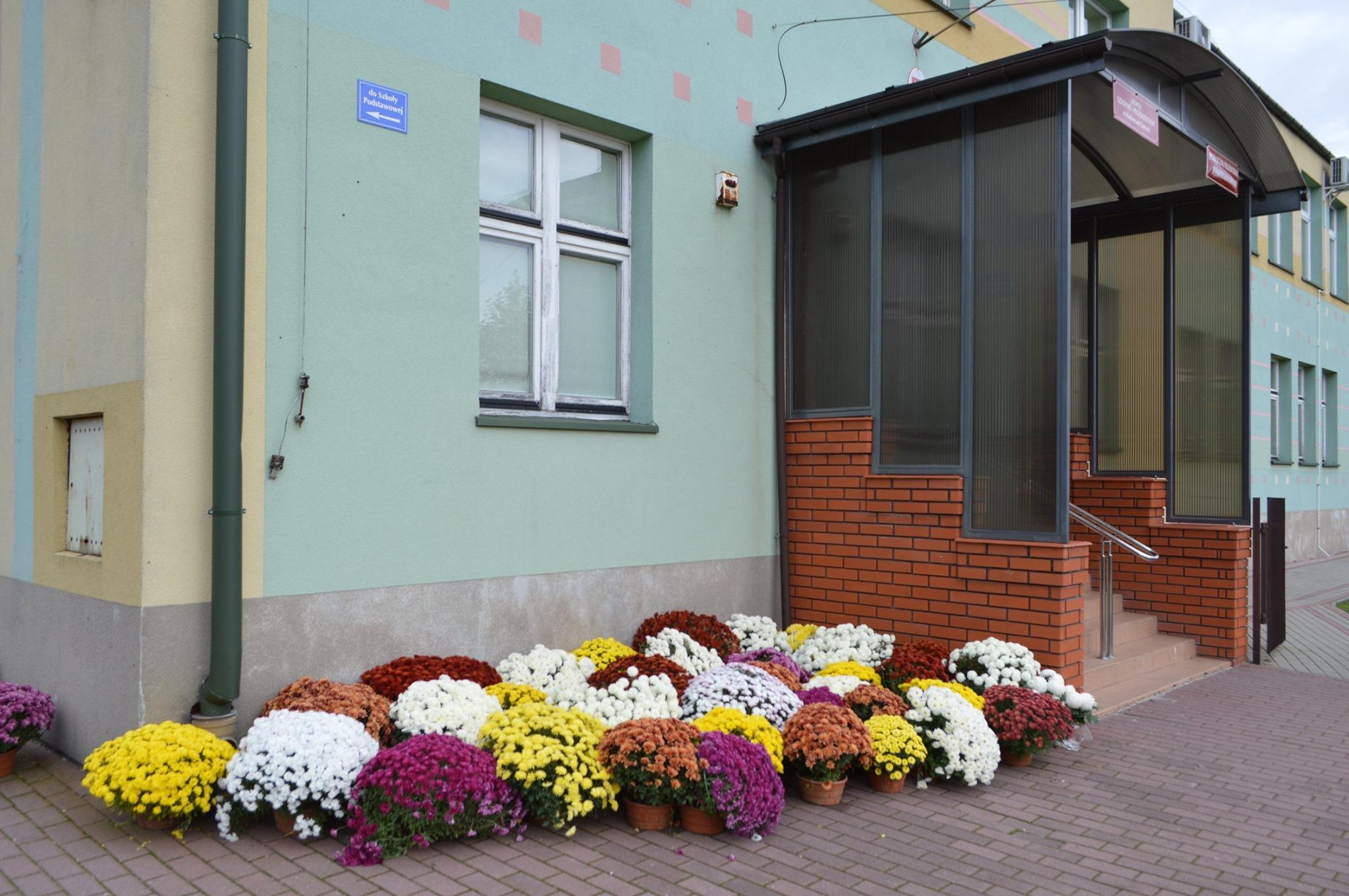 Wadowice całe w kwiatach - Zdjęcie główne