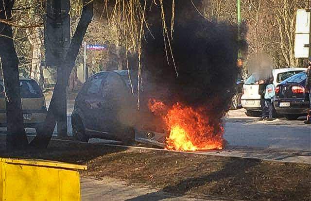 Strażacy gasili pożar samochodu [ZDJĘCIA] - Zdjęcie główne