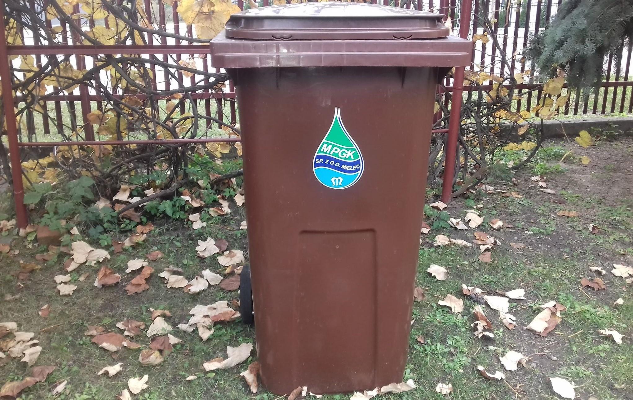 Jest zmiana. Odpady zielone będą nadal odbierane raz na tydzień  - Zdjęcie główne