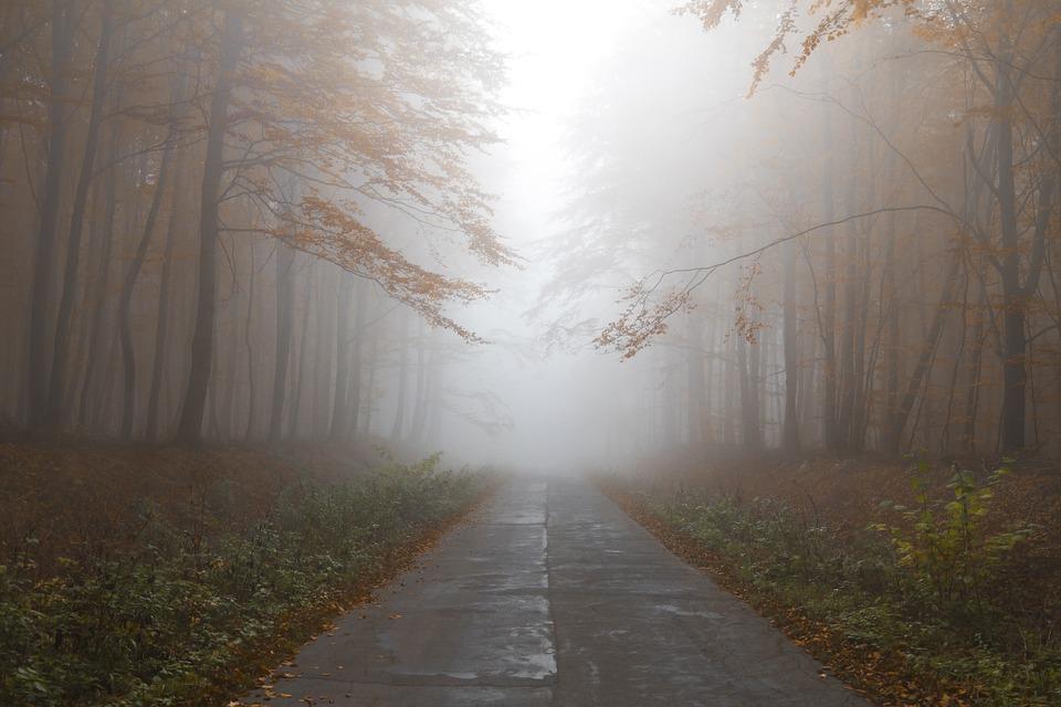 Jesienne warunki na drogach - Zdjęcie główne