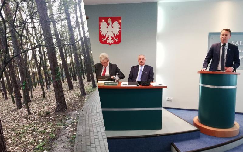 Magistrat chce rozmawiać o przyszłości parku leśnego! Spotkanie dzisiaj!  - Zdjęcie główne