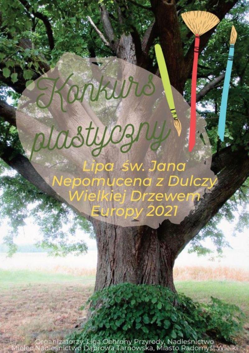 Rusza konkurs plastyczny o Drzewie Roku - Zdjęcie główne