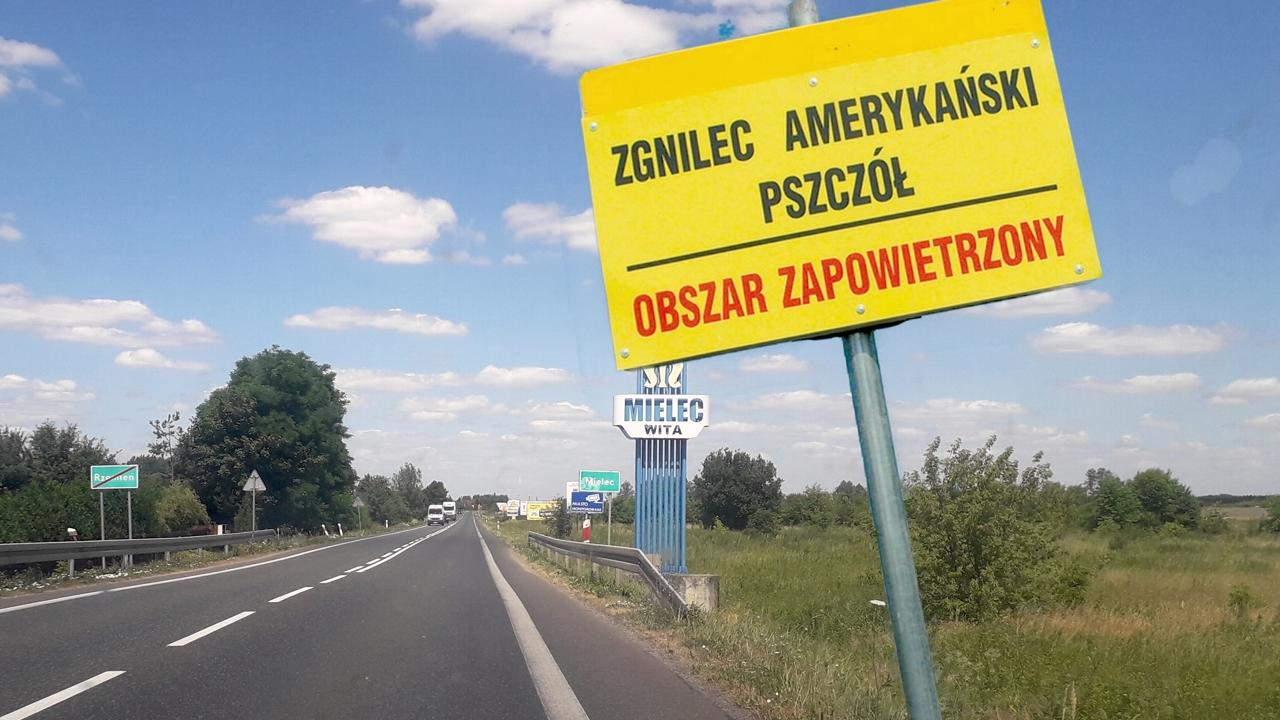 Tabliczki z ostrzeżeniami przy wjeździe do Mielca i kilku okolicznych miejscowości - Zdjęcie główne