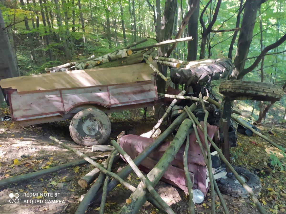 TRAGEDIA w lesie! Mężczyzna został przygnieciony! - Zdjęcie główne
