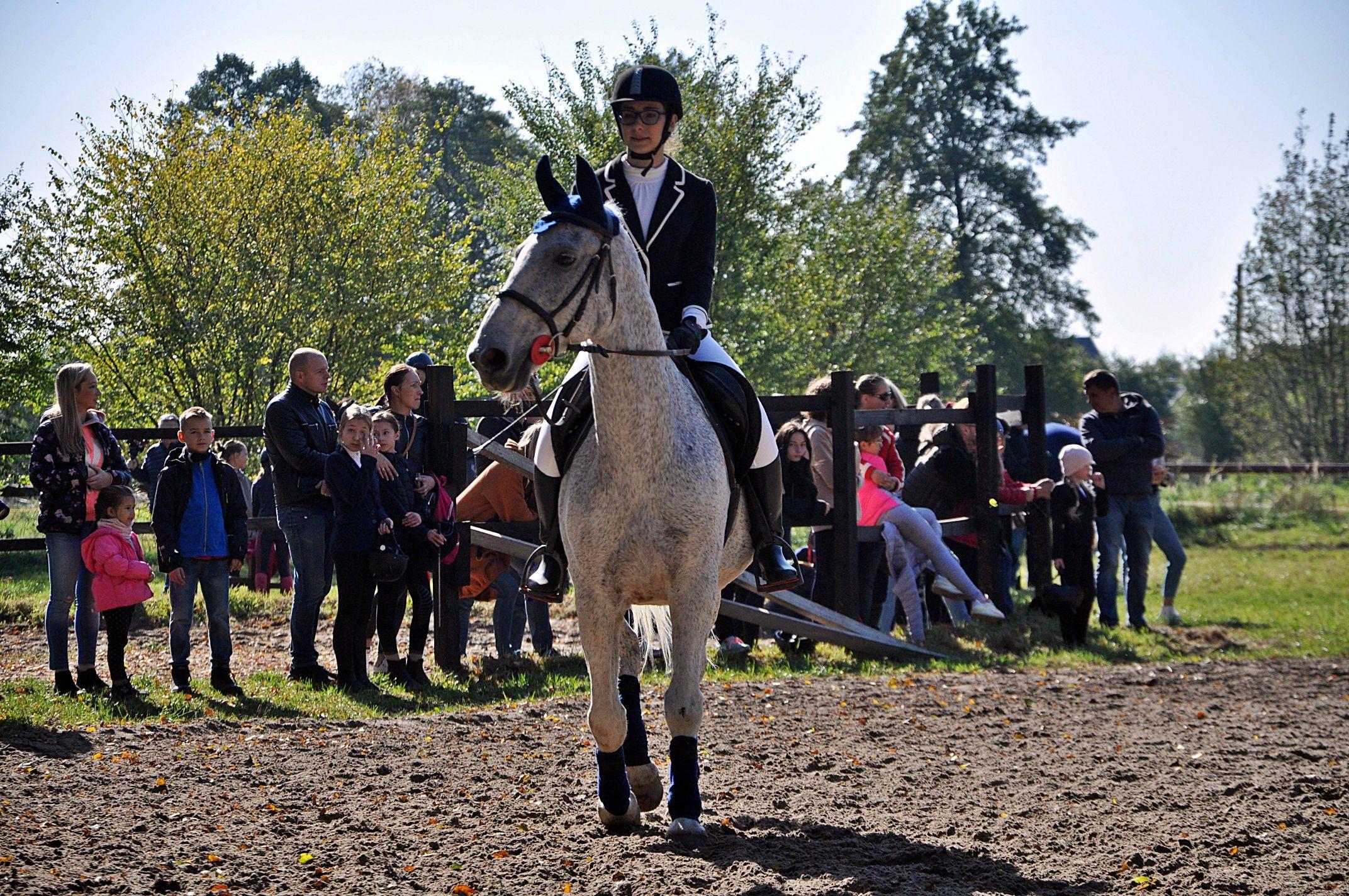 To był pierwszy w tym roku Hubertus. Święto dla miłośników koni i jeździectwa [ZDJĘCIA] - Zdjęcie główne