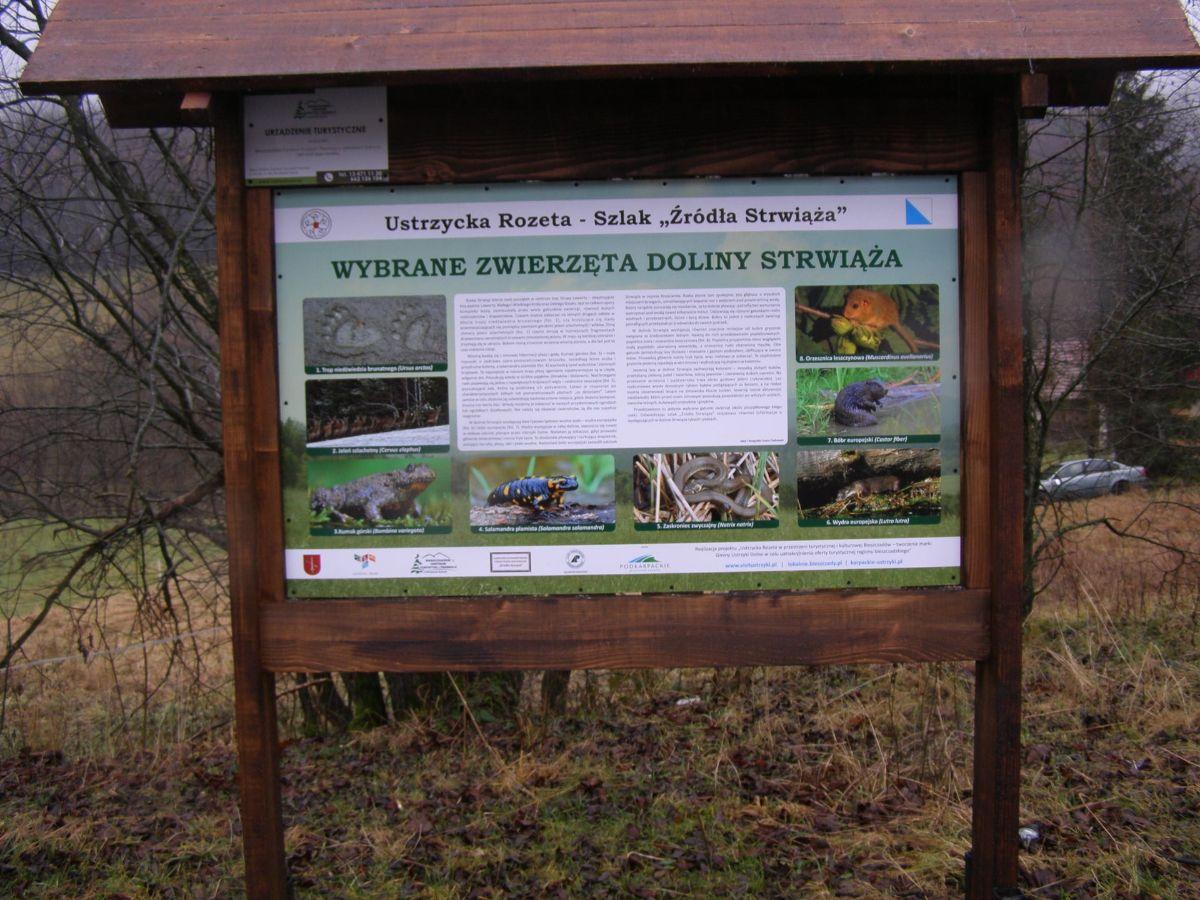Nowy szlak turystyczny w Bieszczadach - Zdjęcie główne
