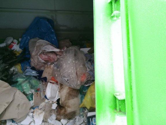 Makabryczne odkrycie! Zatłuczone psy na śmietniku! Oprawcy uderzali je siekierą! - Zdjęcie główne