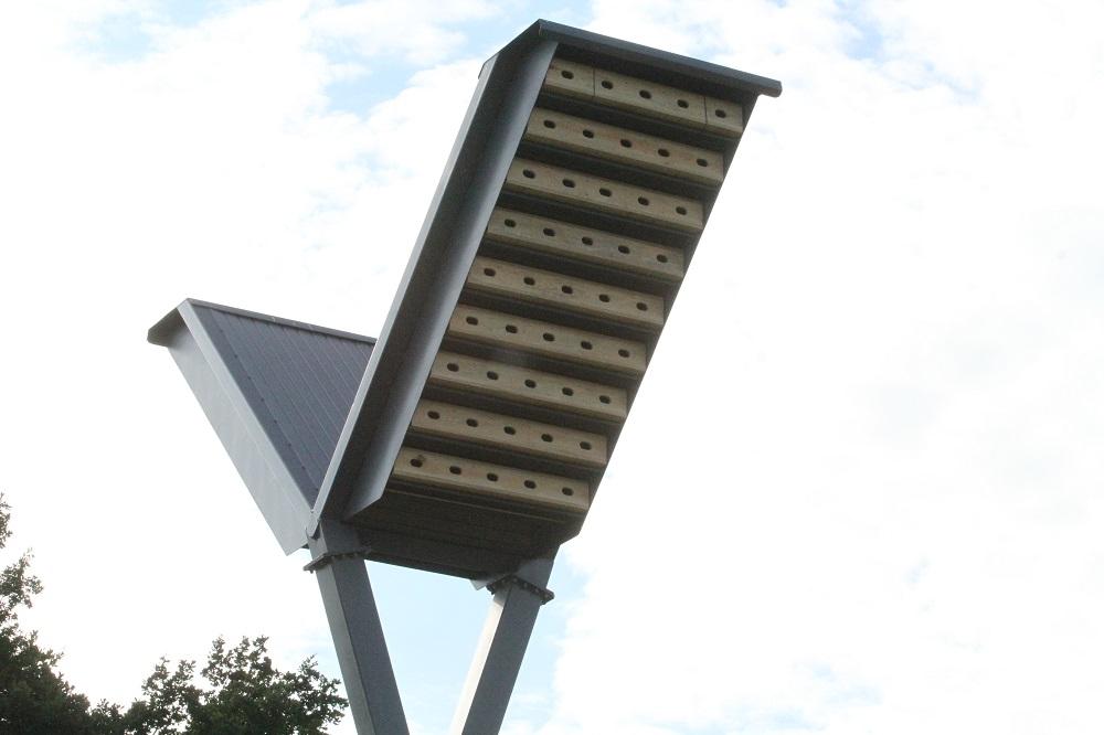 W Mielcu wymyślili alternatywny sposób walki z komarami  - Zdjęcie główne