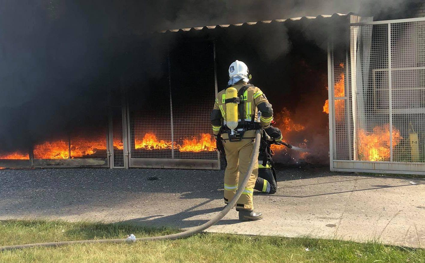 Pożar magazynu przy fabryce w Gorzycach [ZDJĘCIA] - Zdjęcie główne