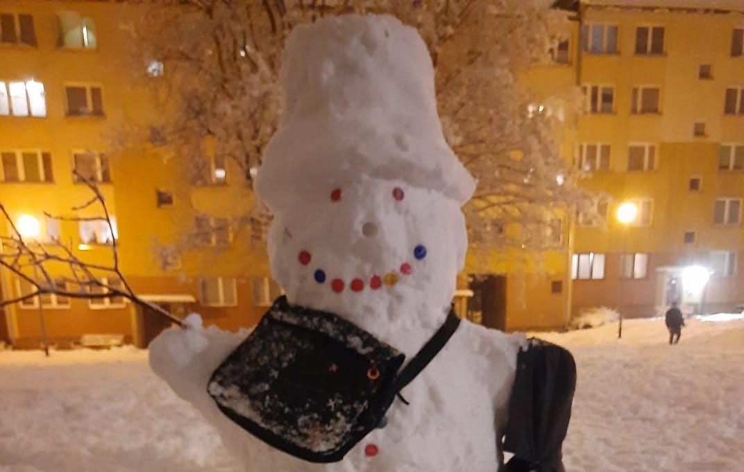 Zima dała też radość. Bałwan-gigant w Stalowej Woli! [FOTO] - Zdjęcie główne