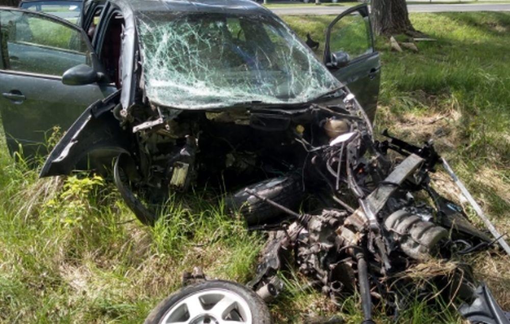 Auto zderzyło się z drzewem... NA WYSOKOŚCI DWÓCH METRÓW! [ZDJĘCIA] - Zdjęcie główne