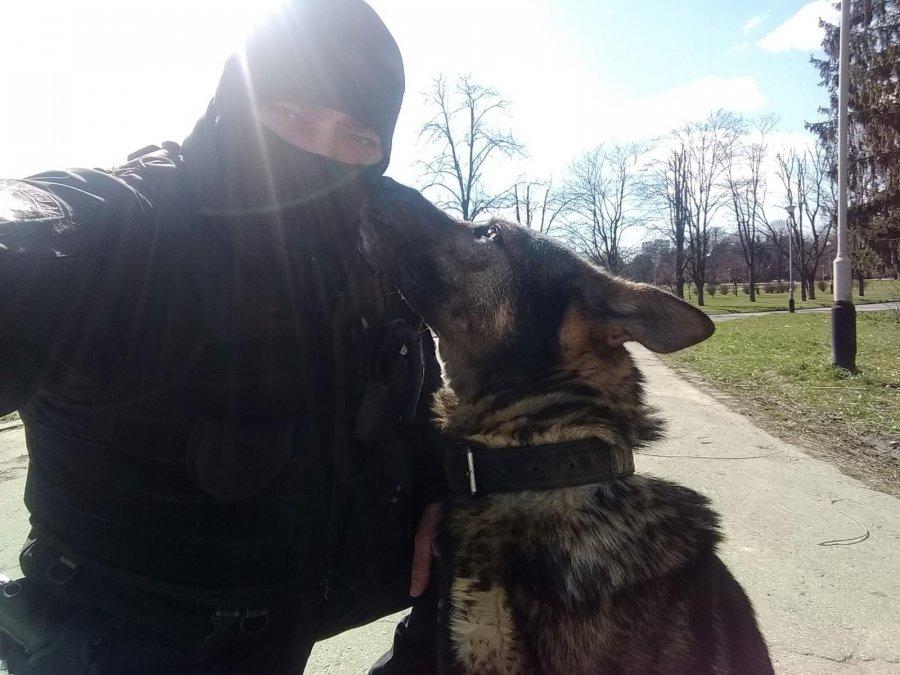 Rzeszowska policja w żałobie! Nie żyje pies Ibdaza! - Zdjęcie główne