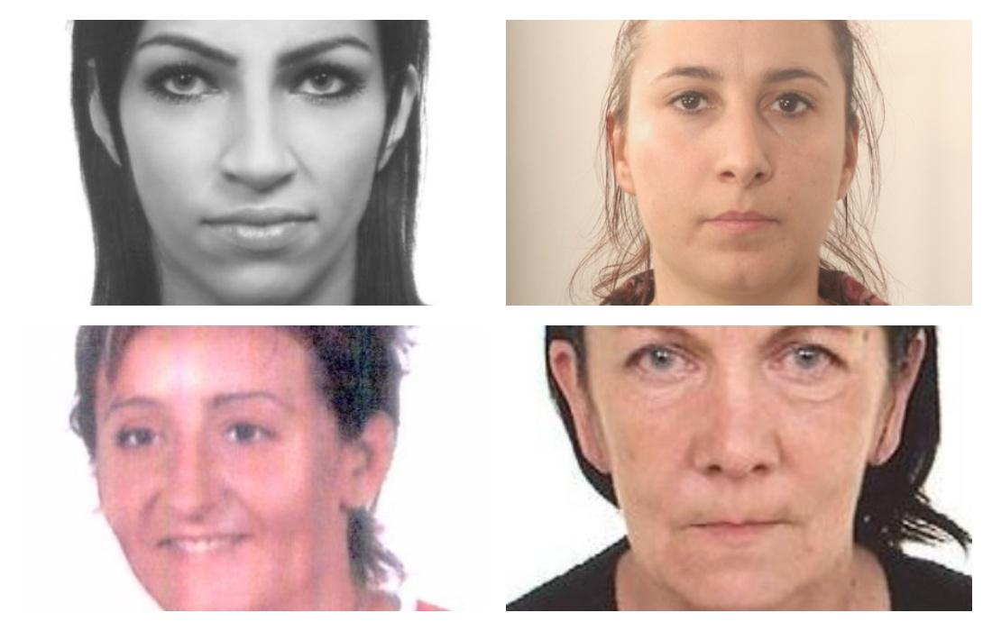 Niebezpieczne kobiety. Wciąż są poszukiwane przez policję! [ZDJĘCIA] - Zdjęcie główne
