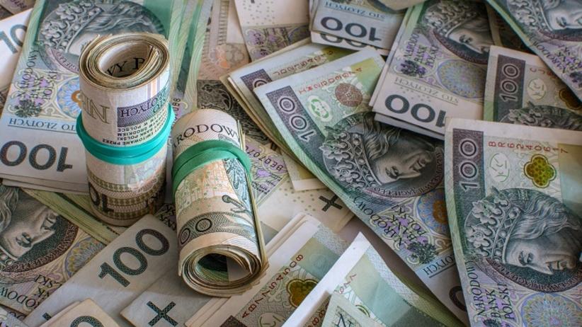 Podatkowi oszuści w sidłach służb skarbowych - Zdjęcie główne