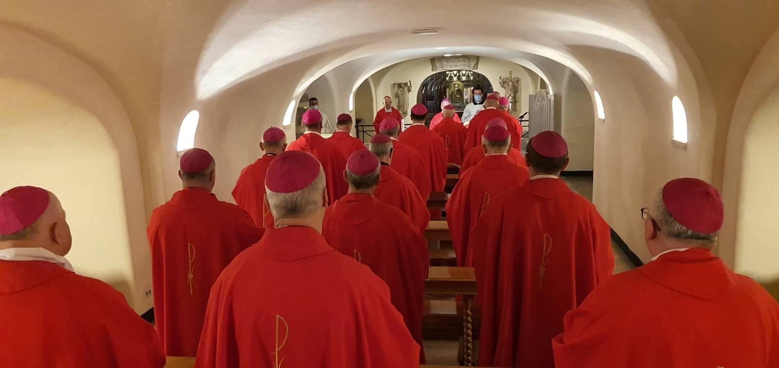 Podkarpaccy biskupi u papieża. Trwa kongres polskich hierarchów w Watykanie [ZDJĘCIA] - Zdjęcie główne