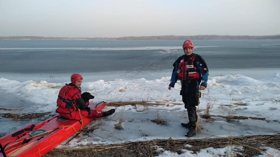 Pod psem załamał się lód! - Zdjęcie główne